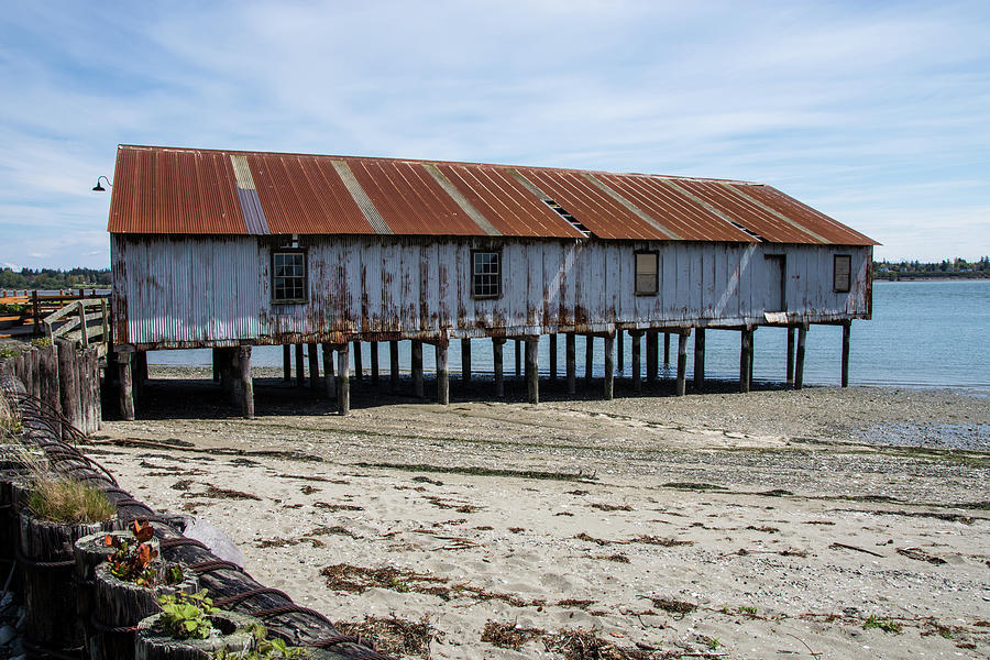 Pilings and Rusty Roof by Tom Cochran