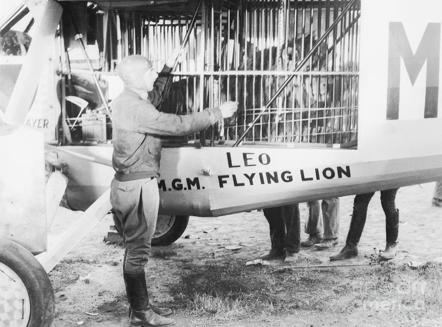 Pilot Martin Jensen With Leo The Lion Photograph by Bettmann