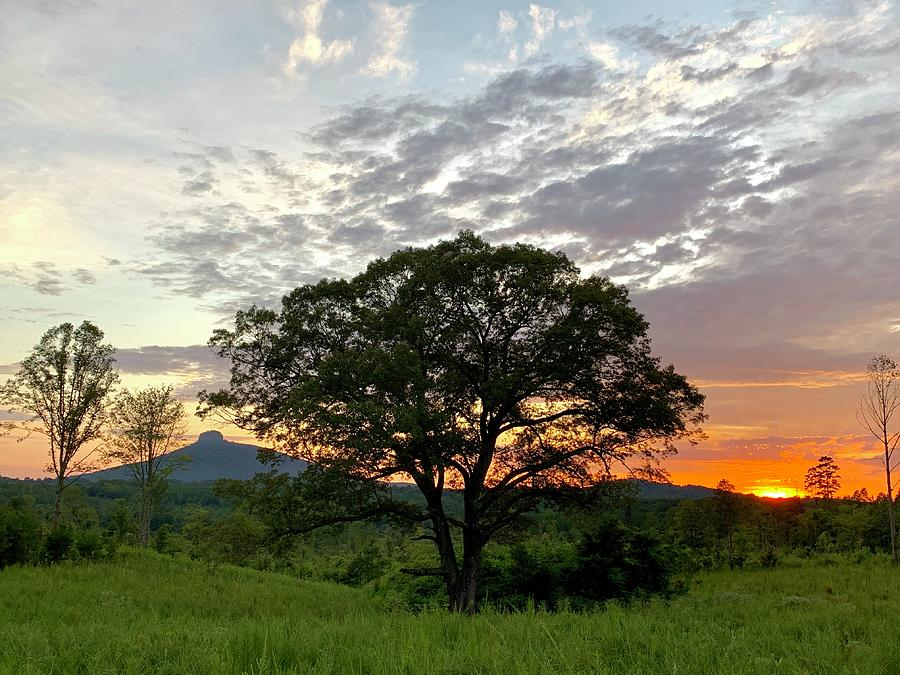 Pilot Mountain Sunset by Chris Berrier