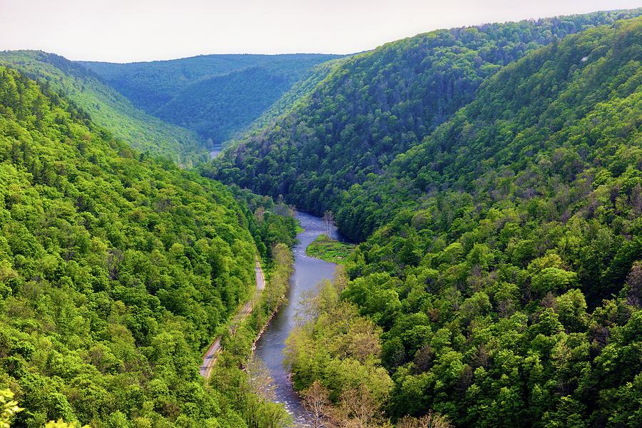 Pine Creek Gorge Photograph