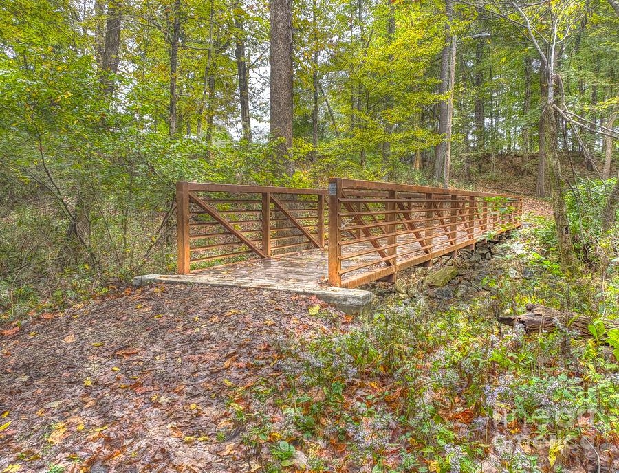 Pine Quarry Park Bridge by Jeremy Lankford