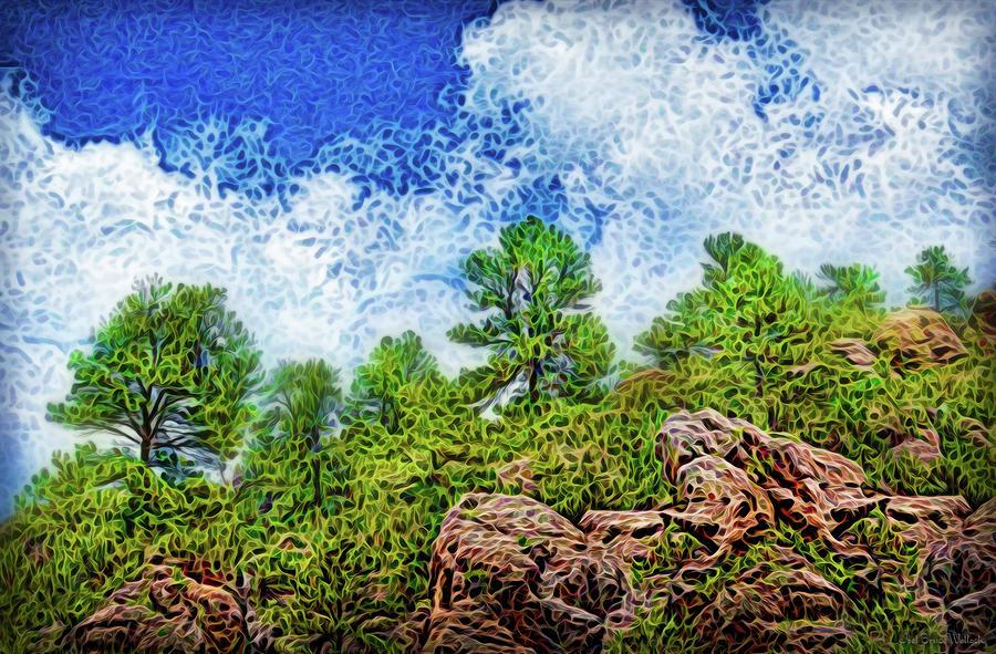 Pine Skyline Atmospheres by Joel Bruce Wallach