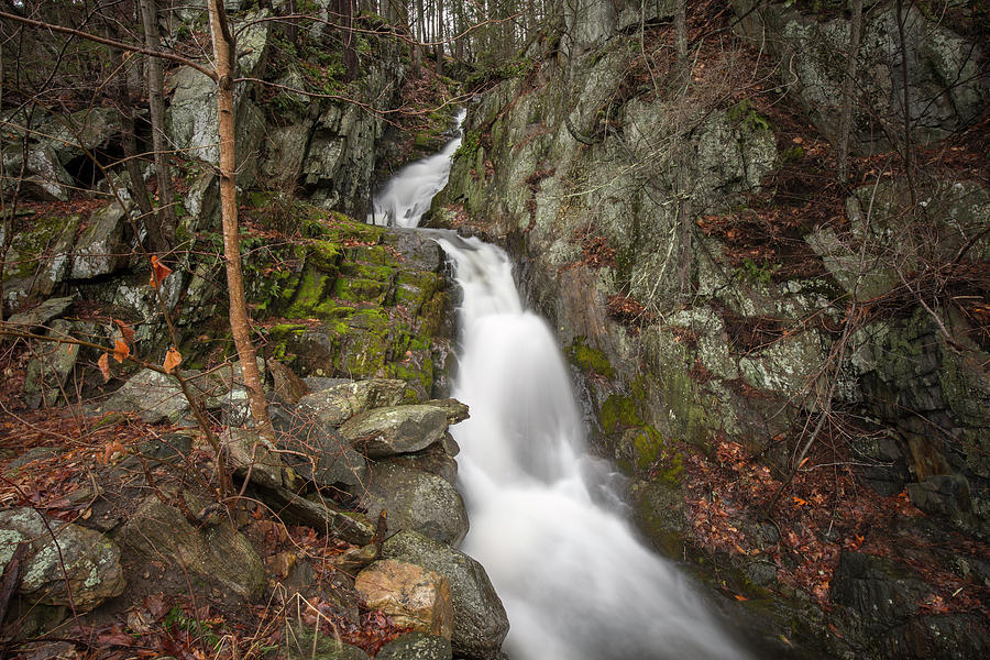 Pine Swamp Brook Falls, Connecticut by Greg Parsons