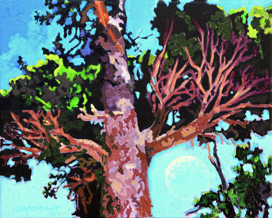 Pine Tree Painting - Pine Tree with Daylight Moon by John Lautermilch