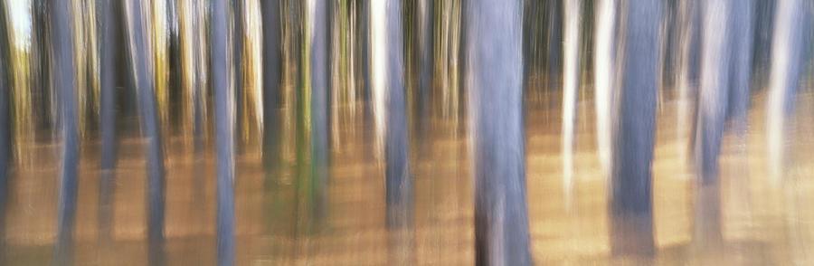 eddie soloway - motion blur...
