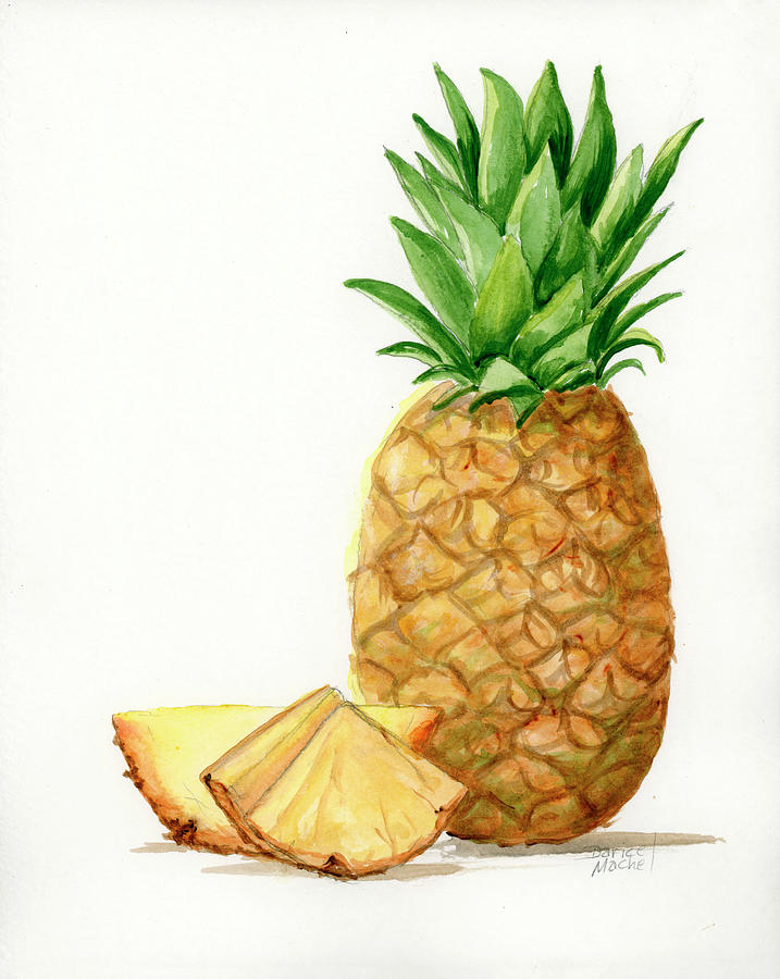 Pineapple Slices by Darice Machel McGuire