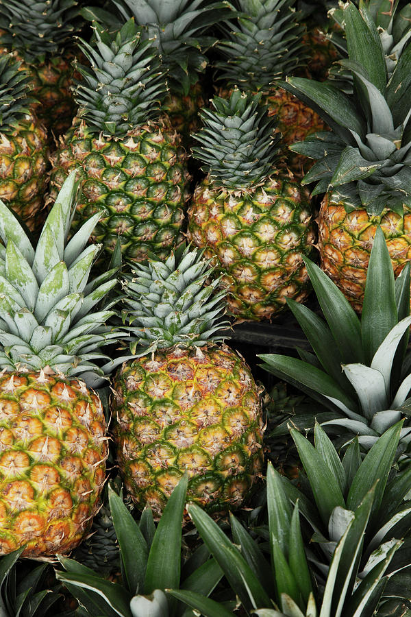 Pineapples In Market Photograph by Paul Taylor