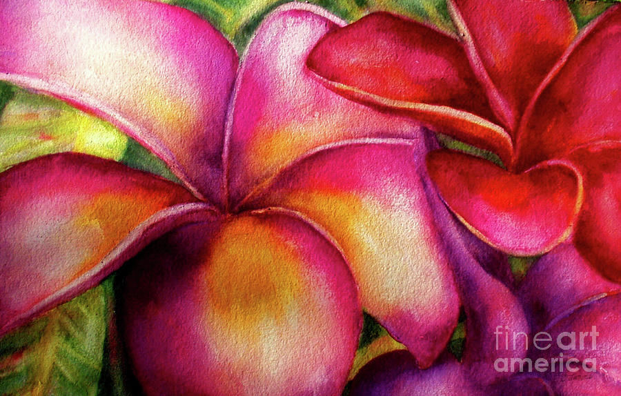 Pink and Red Plumerias by Carolyn Jarvis