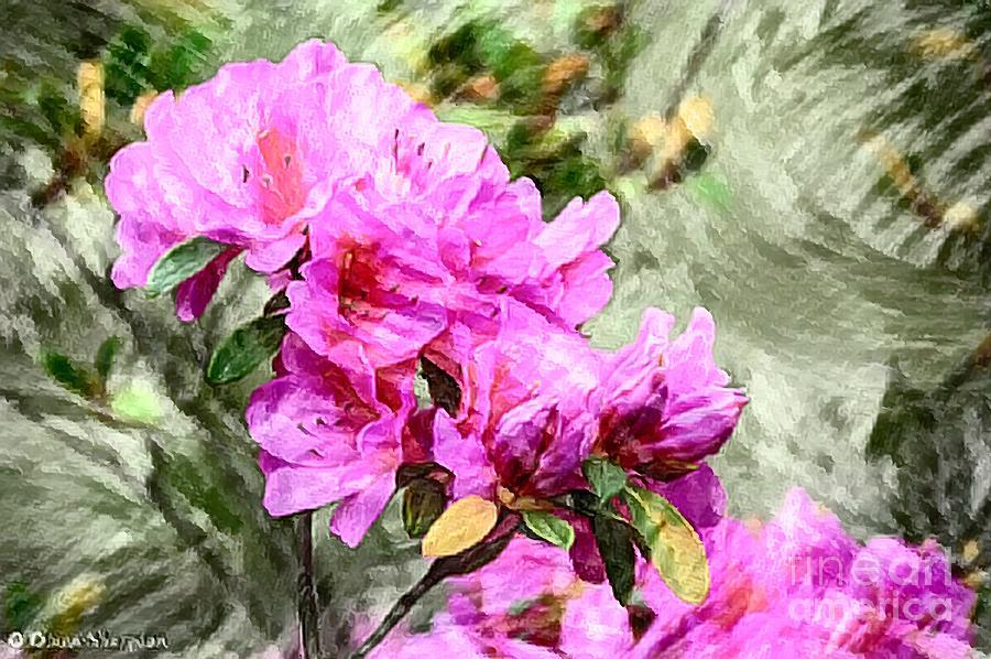 Pink Azaleas by Diana Mary Sharpton