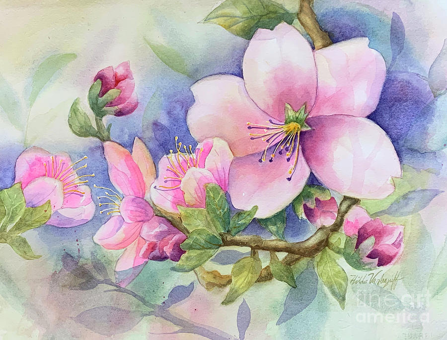Pink Blossoms by Hilda Vandergriff