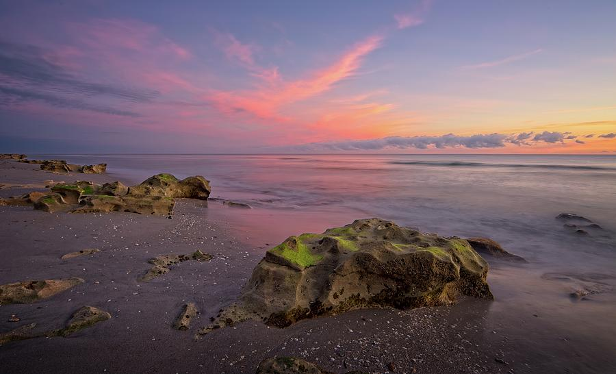 Pink Clouds  by Steve DaPonte