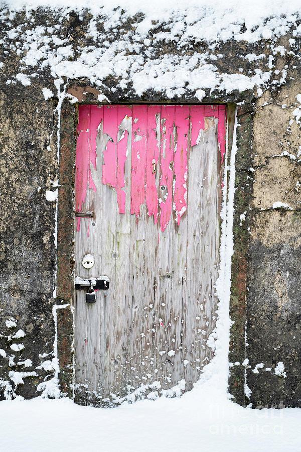 Pink Door by Tim Gainey
