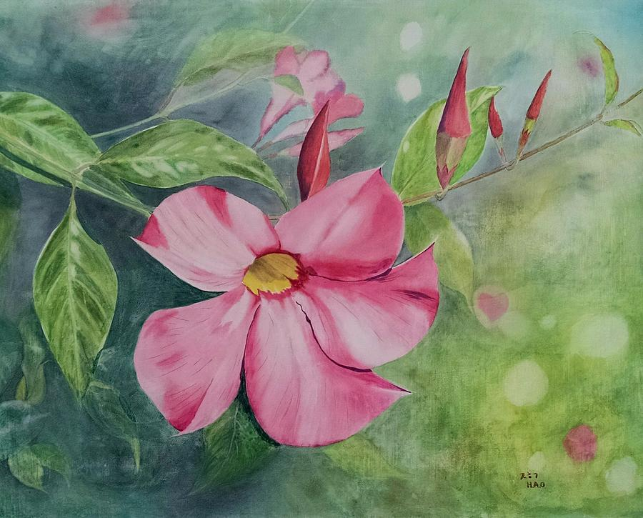 Pink Mandevilla 2 Painting by Helian Osher