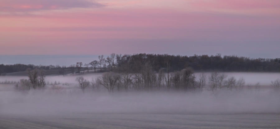 Pink Misty Morning #1 - Winter Fog by Patti Deters
