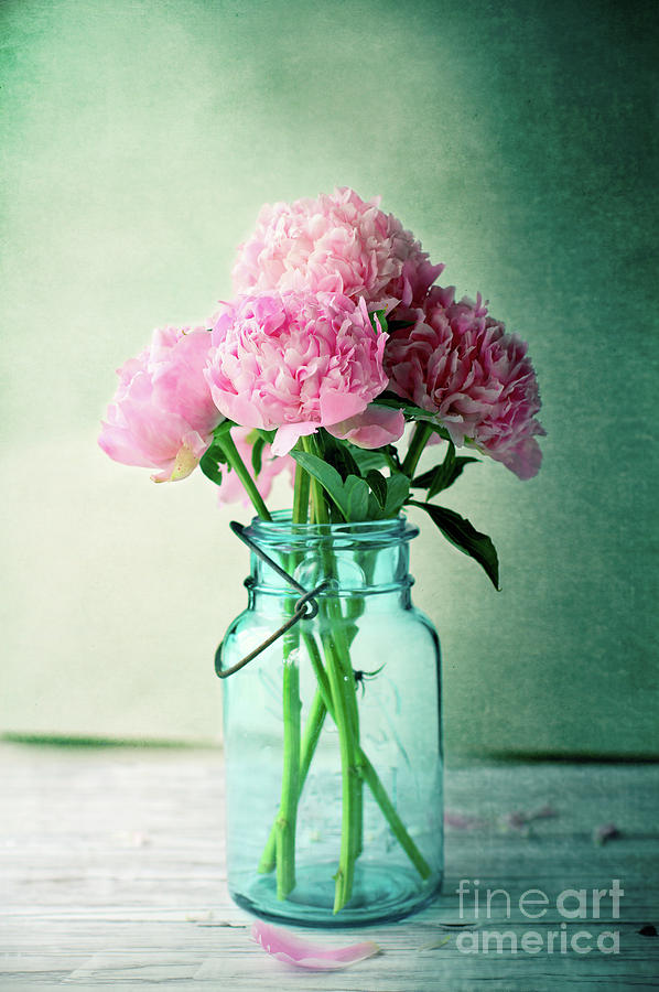 Pink Peonies in a Blue Antique Mason Jar by Stephanie Frey