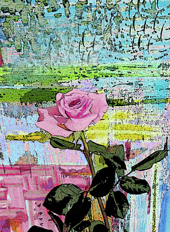 Pink Rose 1018 by Corinne Carroll