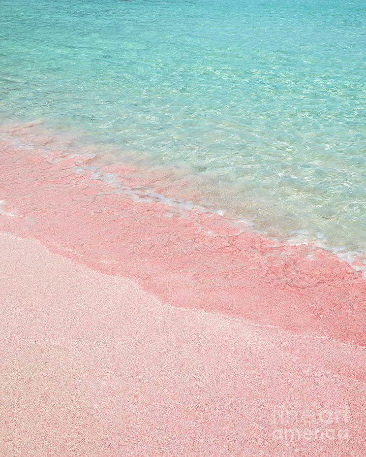 Beach Photograph - Pink Sand Beach by Delphimages Photo Creations