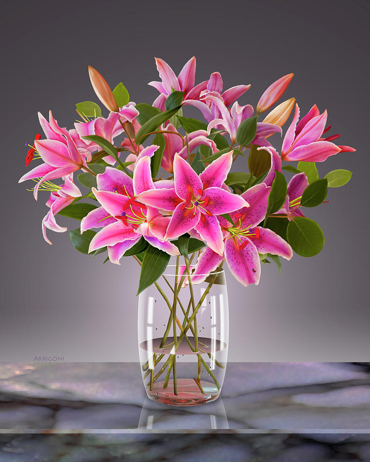 Pink Stargazer Lilies in Vase by David Arrigoni