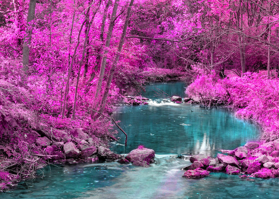 Pink Trees Blue Stream by Jason Fink