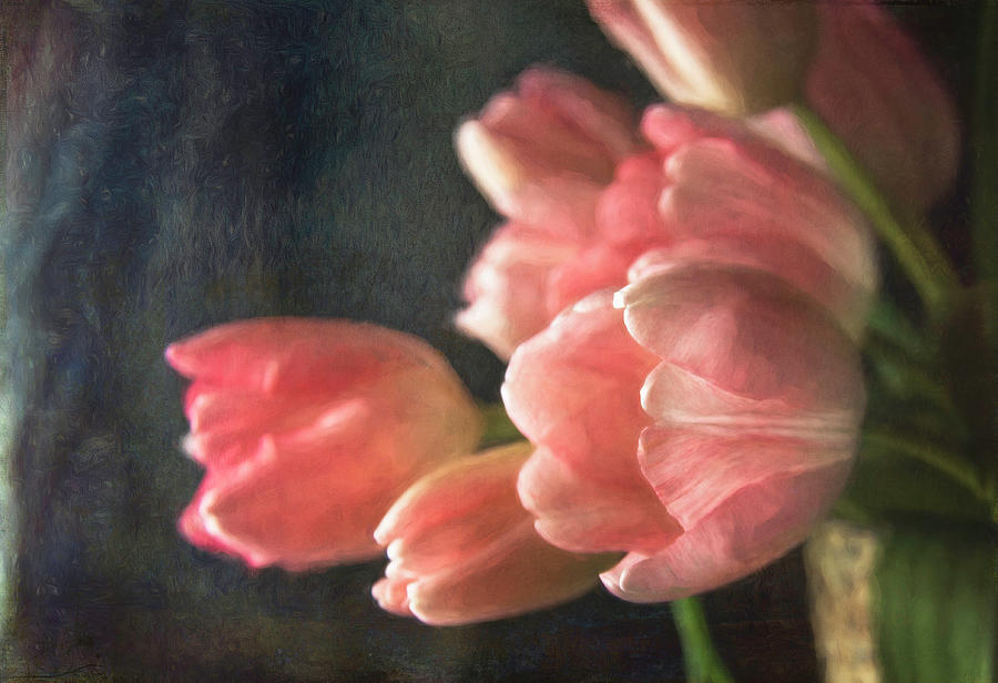 Pink Tulip Bouquet by Cindi Ressler