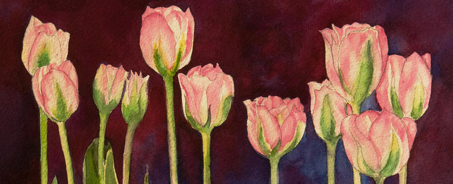 Pink Tulips detail by Heidi E Nelson