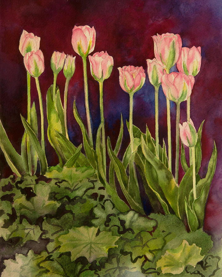 Pink Tulips by Heidi E Nelson