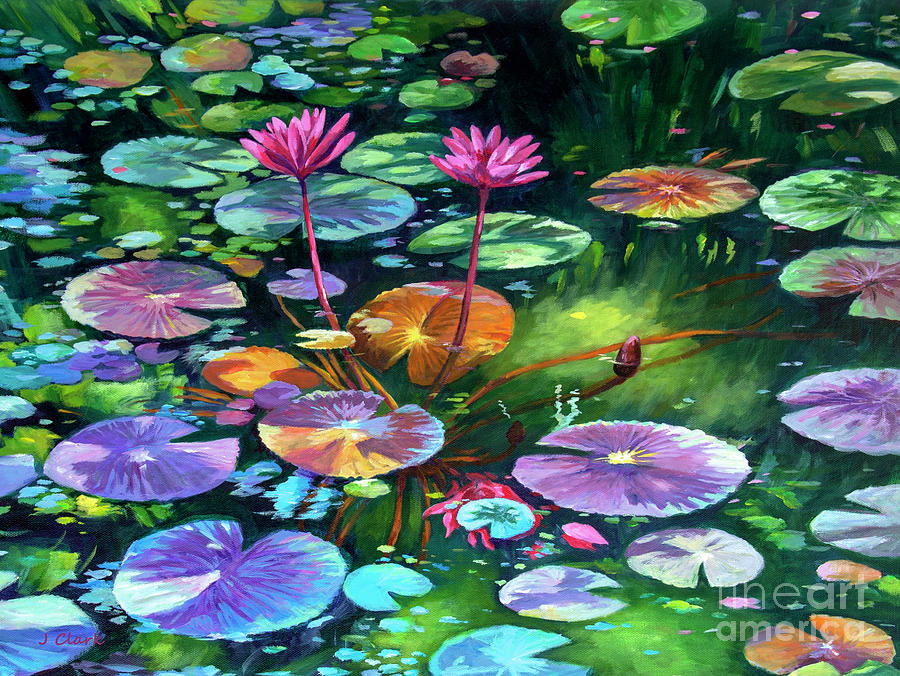 Pink Painting - Pink Water Lilies And Lily Pads by John Clark