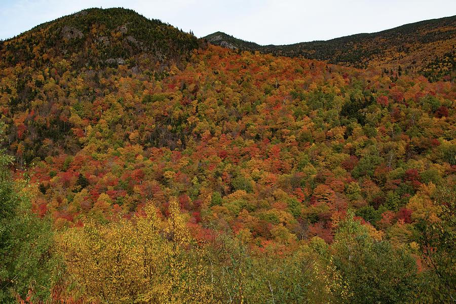 Pinkham Notch New Hampshire by Jeff Folger