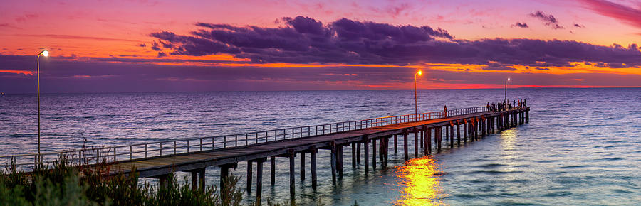 Melbourne Photograph - Pinks N Golds by Sean Davey