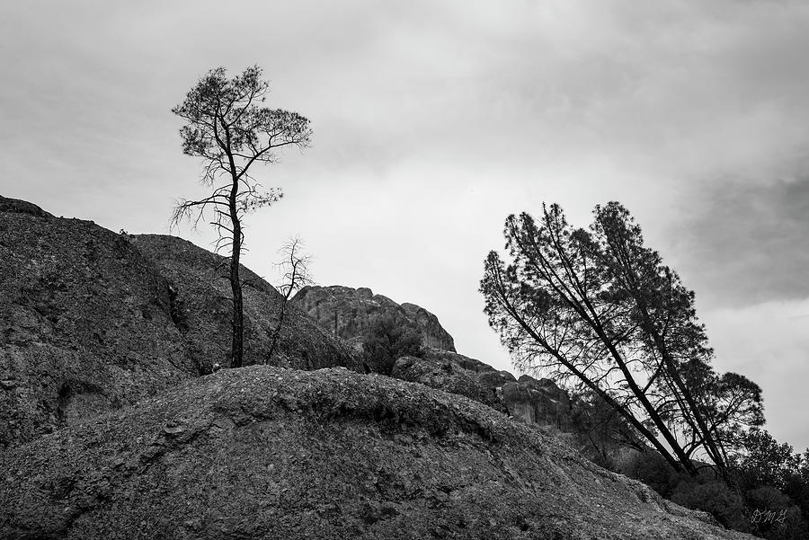 Pinnacles NP II BW by David Gordon