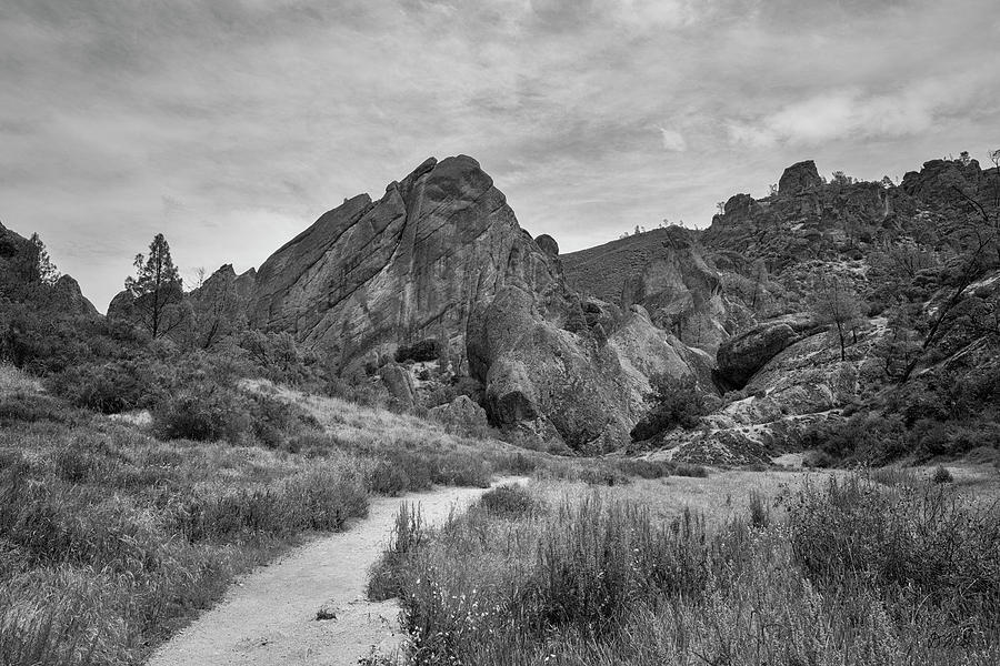 Pinnacles NP III BW by David Gordon
