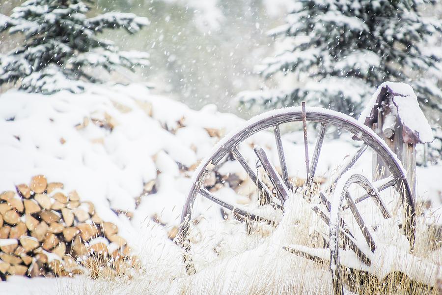 Pioneer Christmas by Diane Mintle