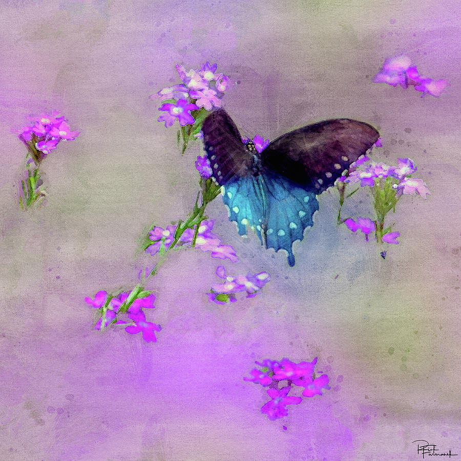 Pipevine Swallowtail in Digital Watercolor by Rick Furmanek