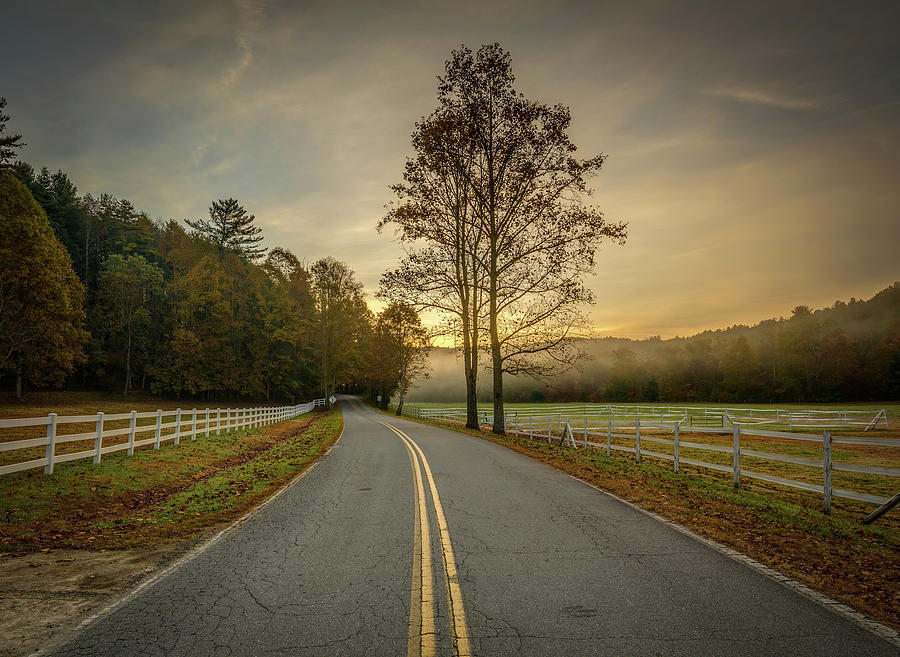 Pisgah Forest Mountain Farm Road by Donnie Whitaker
