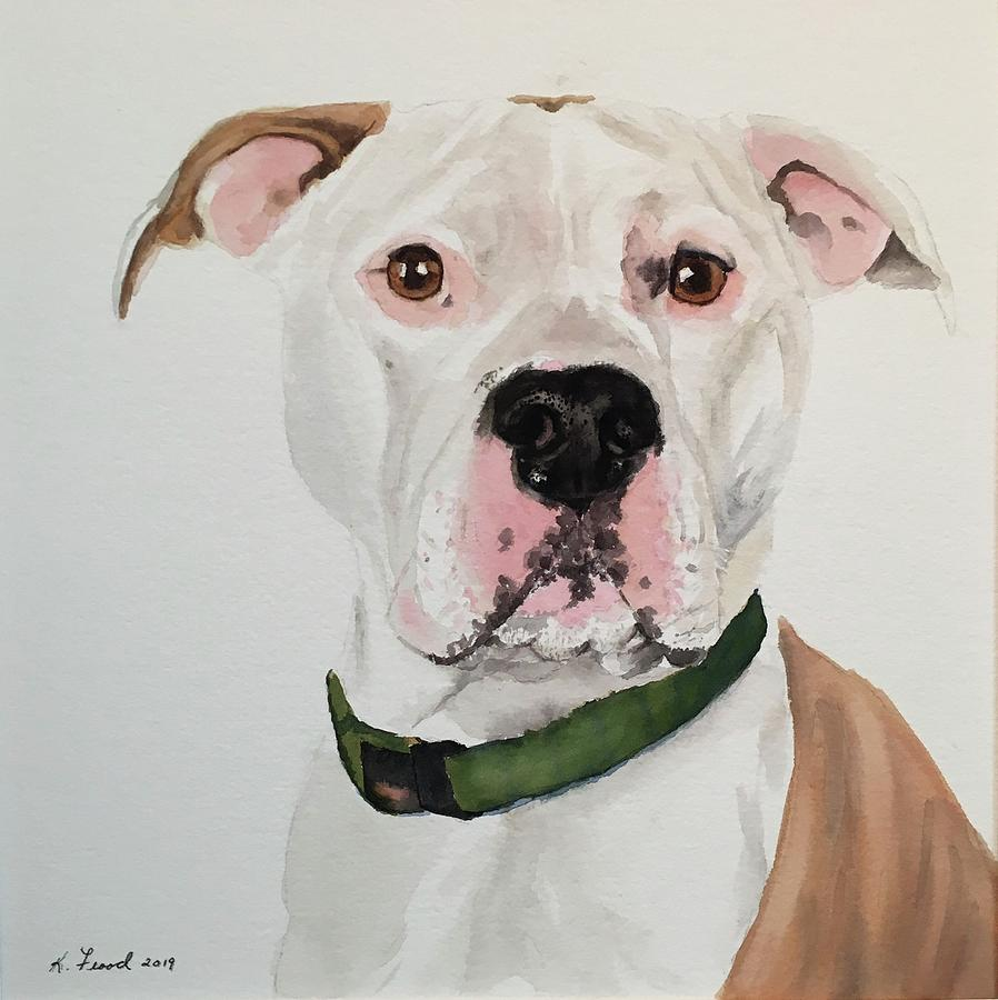Pit Bull by Kathy Flood