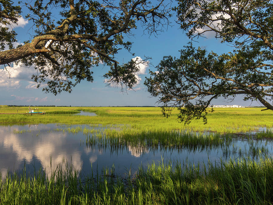 Pitt Street Bridge Blue and Green by Donnie Whitaker