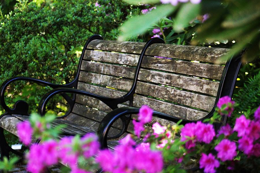 Excellent Pittock Garden Bench Ncnpc Chair Design For Home Ncnpcorg