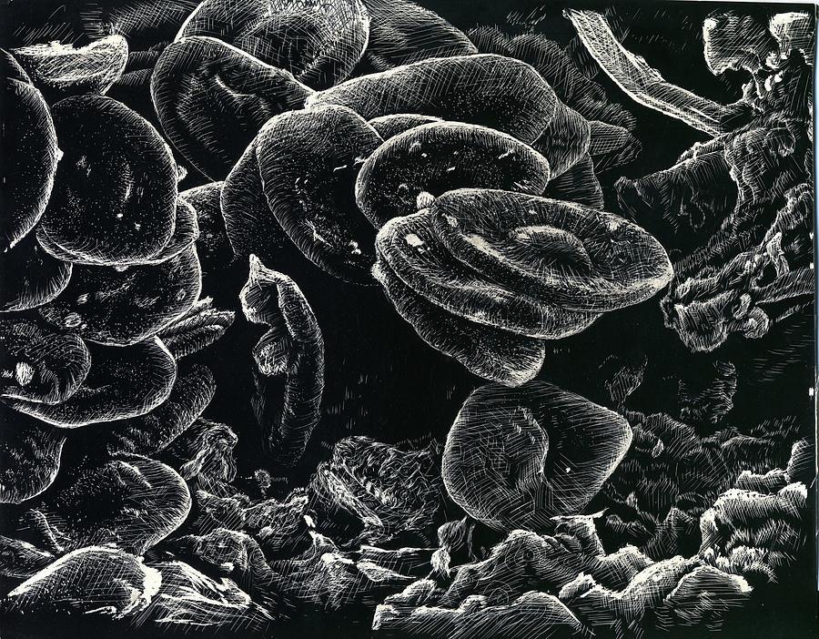 Platelet  by Jeremy Robinson