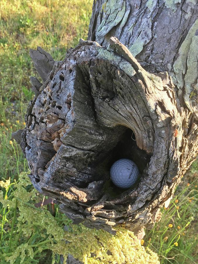 Play It as it lies -Golf by Matthew Seufer