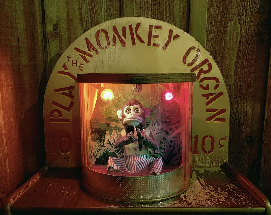 Play the Monkey Organ by Marilyn Hunt