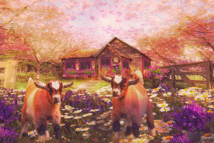 Playing in the Garden in Nostalgic Colors by Debra and Dave Vanderlaan