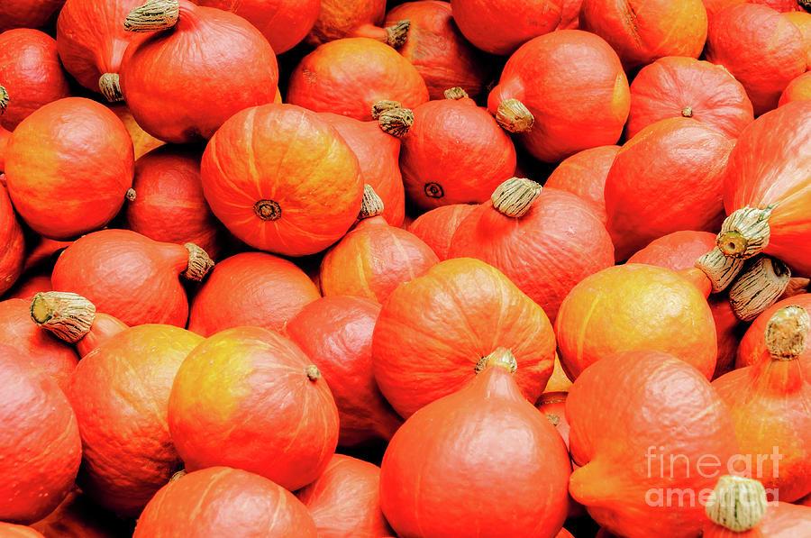 Plenty red-orange pumpkins on the market. by Ulrich Wende