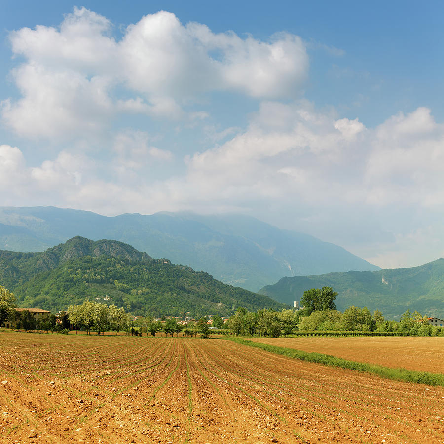 Plowed Field And Distant Mountains Photograph by Mammuth