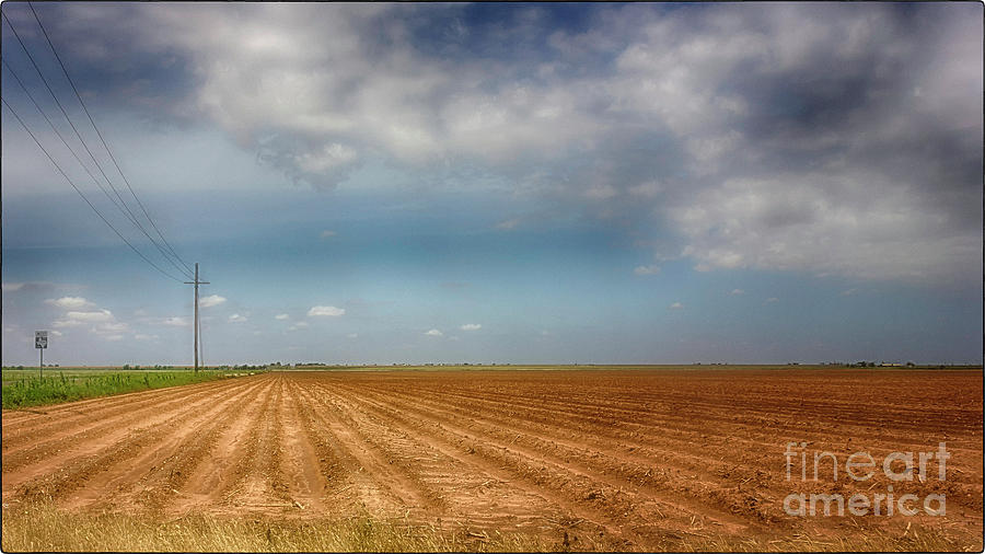 Plowed Field by Natural Abstract Photography