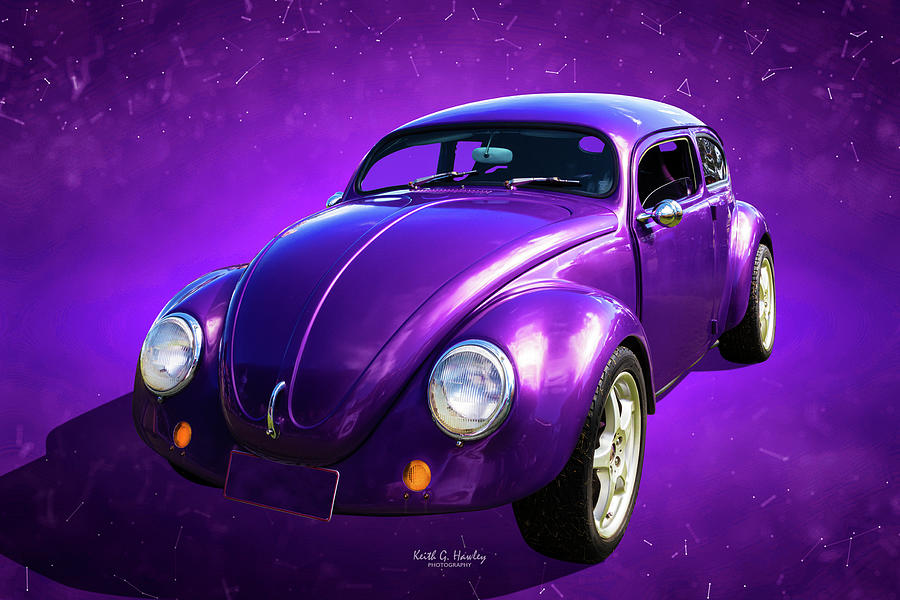 Plum Beetle by Keith Hawley