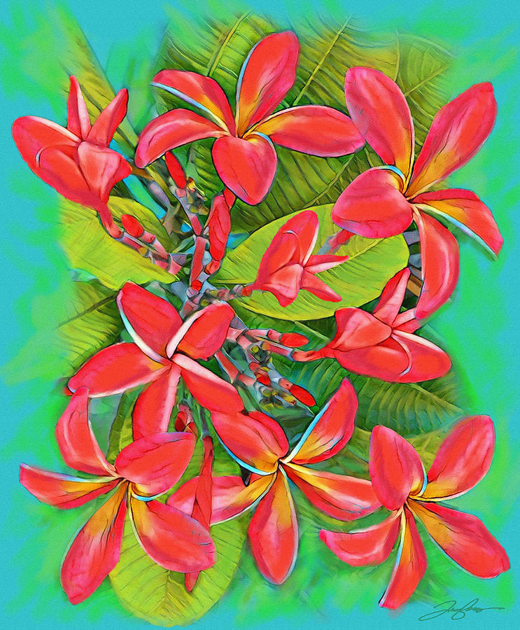 Plumeria Sunburst by Tony Franza