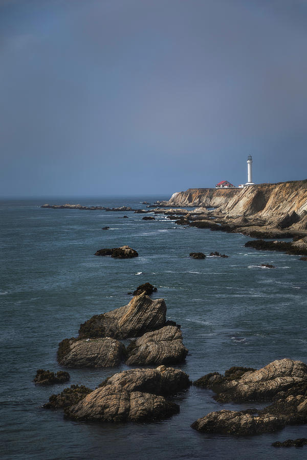 Point Arena Lighthouse Vertical by Teresa Wilson