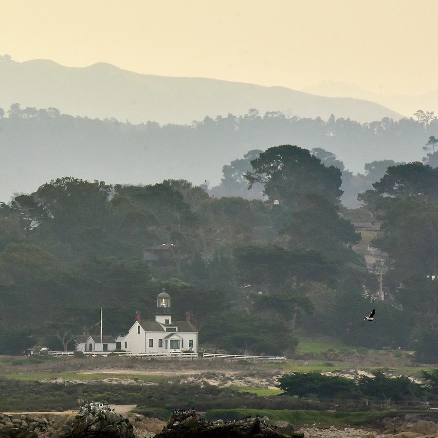 Point Pinos Light, Monterey by Cindy McIntyre