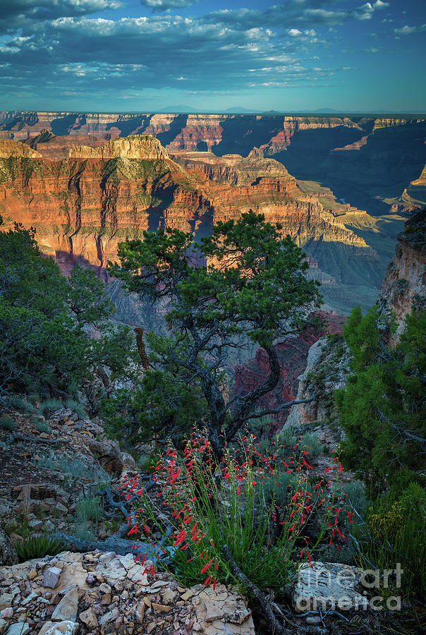 America Photograph - Point Sublime Paradise by Inge Johnsson
