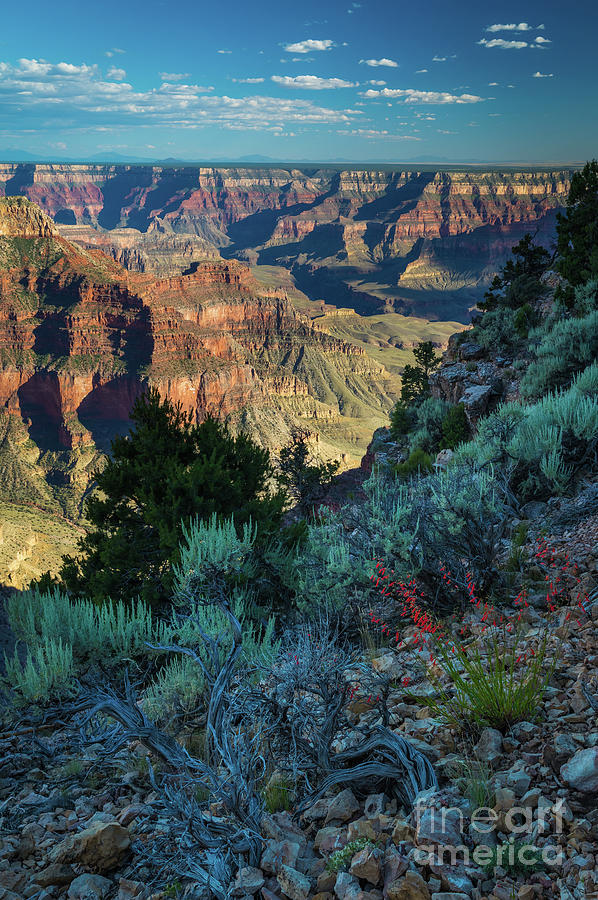 America Photograph - Point Sublime Scenery by Inge Johnsson